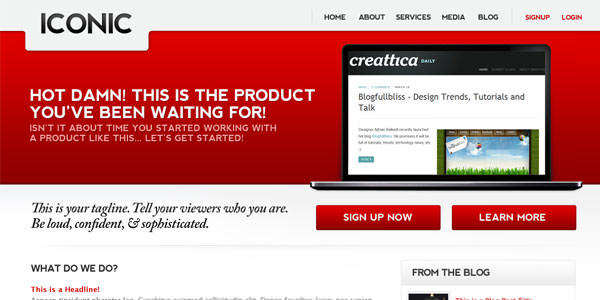 Red Colored Websites Design (19)