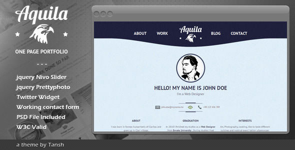 Premium HTML Website Templates and Layouts (11)