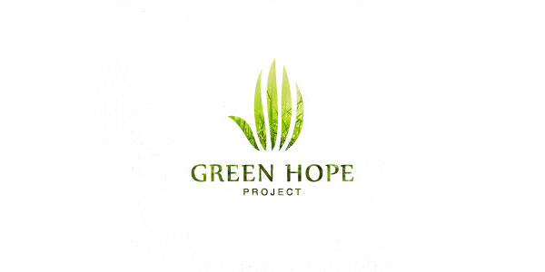 Green Logo Design (8)
