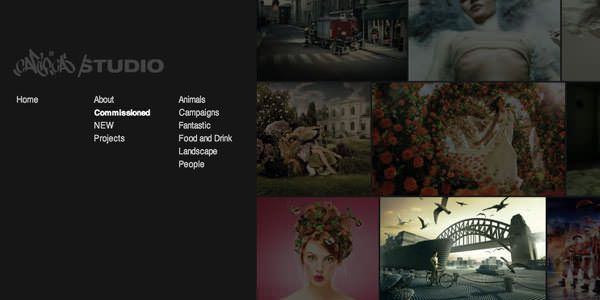 Professional Photographer Portfolio Websites for Inspiration (20)
