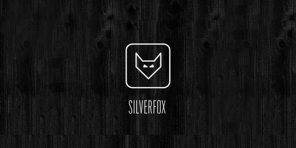Fox Logo Design Examples for Inspiration (3)