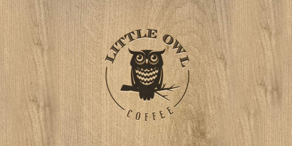 Owl Logo Design Examples for Inspiration (3)