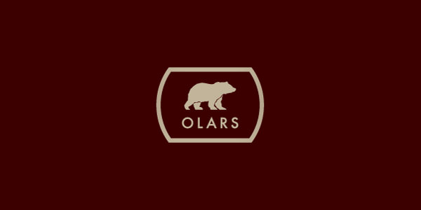 Bear Logo Design Examples for Inspiration (11)